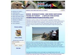 Birdwatching and Bird Watching Turkey