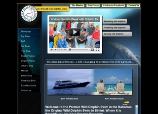 Dolphin Expeditions